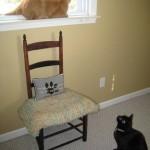 Mancats - Window Sharing?