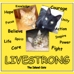 LiveStrong!