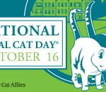 National Feral Cat Day 2012