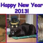 Happy New Year 2013!!