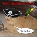We Arrr Meowin' Like Pirates!