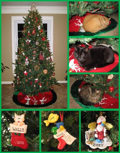 christmaseve2013