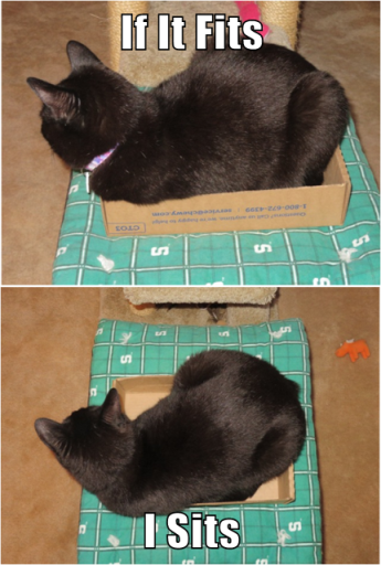 ernie-in-box