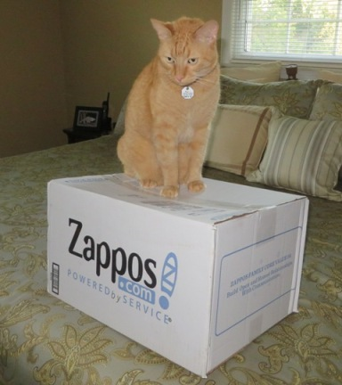 wally-zapposbox1