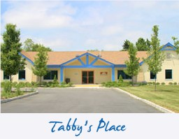 tabbyplace