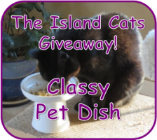 dish-giveaway-2