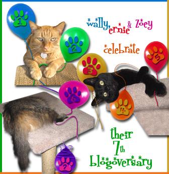 Island Cats Blogoversary ALTERNATE