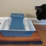 PetSafe Drinkwell Pagoda Fountain Review & Giveaway