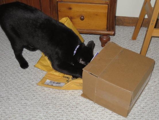 ernie-box-2