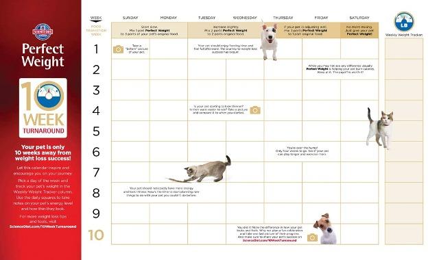 hills-calendar
