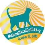 National Feral Cat Day 2015
