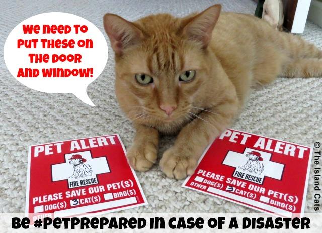 Put Pet Alert Signs on your Door and Window #PetPrepared