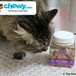 Halo Liv-a-Littles® Protein Treat Review #ChewyInfluencer