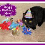 Happy Birthday to the Mom!