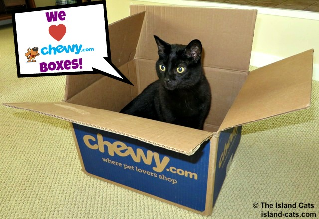 We love Chewy boxes!