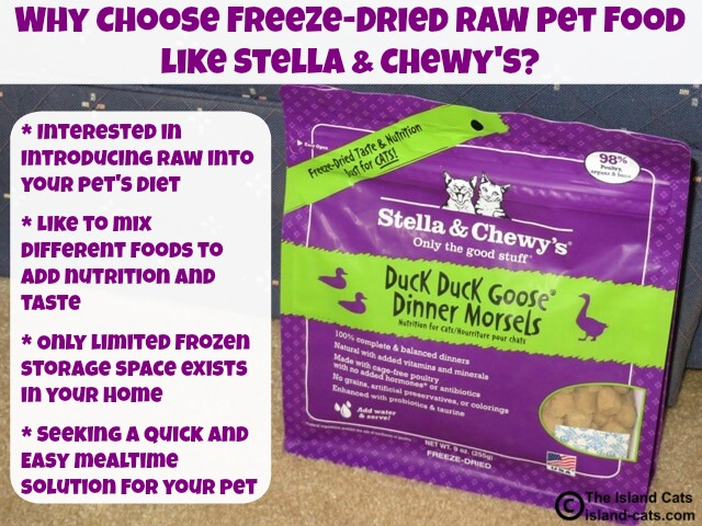 reasons to feed freeze-dried raw food