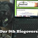 It's Our 9th Blogoversary!