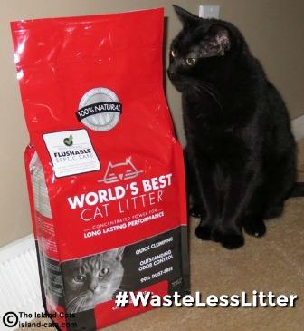 Ernie sitting next to World's Best Cat Litter #WasteLessLitter