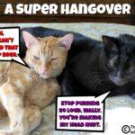 A Super Hangover