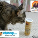 These Treats are Paw Lickin' Good! #ChewyInfluencer