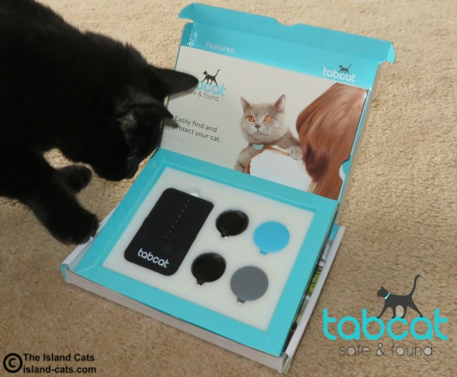 The Tabcat is a GPS for your cat