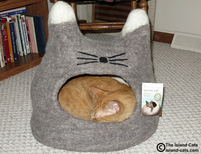 Dharma Dog Karma Cat wool cat bed