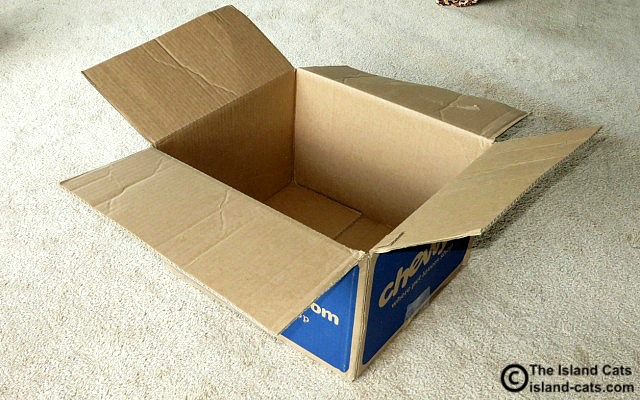 Will this box stay empty for long?