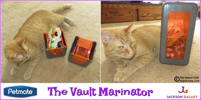 Petmate Jackson Galaxy The Vault Marinator