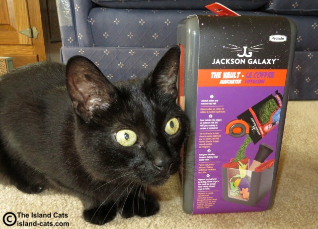 Jackson galaxy cat products from petmate review and for Jackson galaxy cat products
