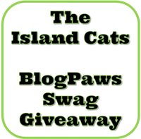 Swag Giveaway Logo