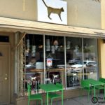 A Visit to the Ferndale Cat Café