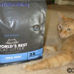 When Does Zero Mean More? When It's World's Best Cat Litter™ Zero Mess™  #alitterbitamazing