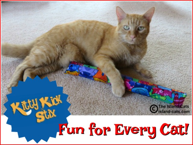 Kitty Kick Stix is fun for every cat!