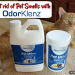 Get Rid of Pet Smells with OdorKlenz®