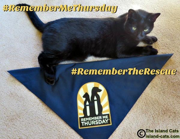 #RememberMeThursday #RememberTheRescue
