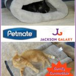Stay Warm and Cozy with the Petmate® Jackson Galaxy™ Kitty Zip Mat
