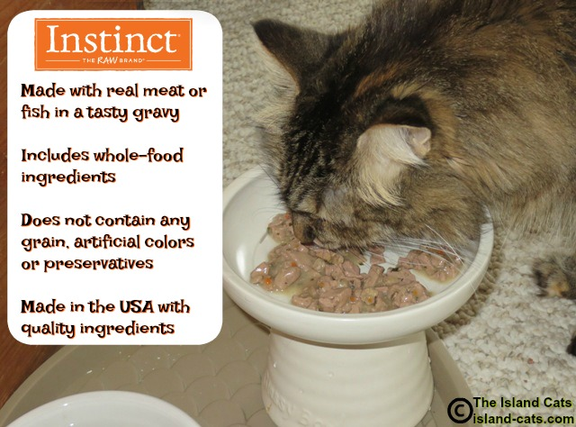 Benefits of Instinct grain-free minced cat food