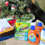5 Things to Donate to Your Animal Shelter this Holiday Season