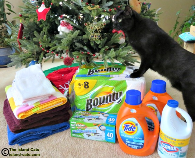 Our animal shelter donations