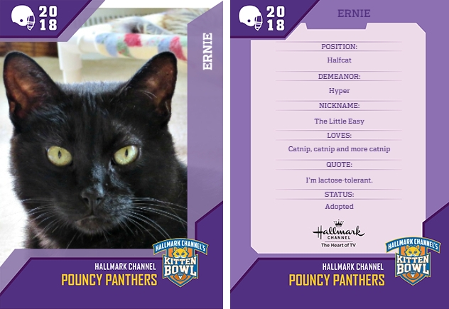 Here's my Catlete Card