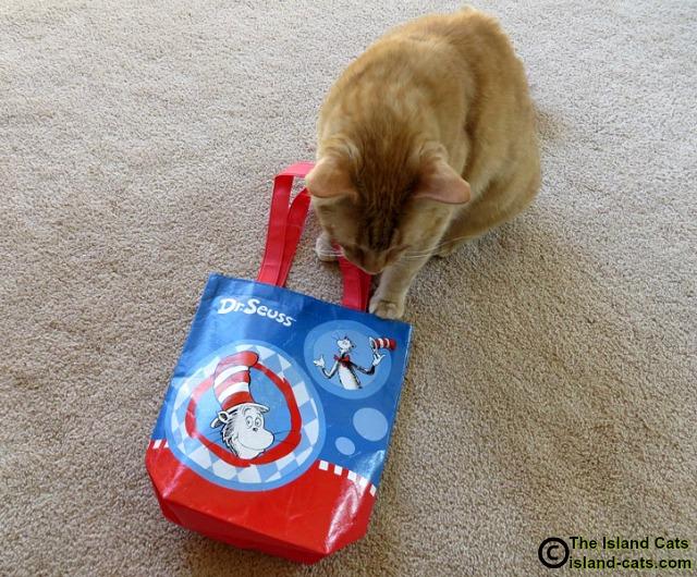 This is a fun Dr. Seuss bag