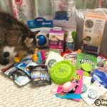 Win Some BlogPaws Swag!