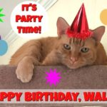 It's Wally's Birthday!