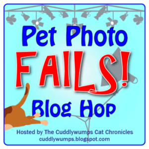Pet Photo Fail Blog Hop badge