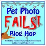 Play Time is Blooper Time #PetPhotoFails