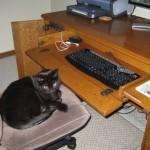 Hey, I'm Blogging!