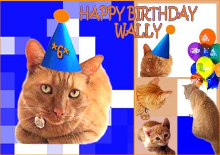 happy_birthday_wally_2