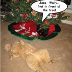 Meowy Christmas Eve
