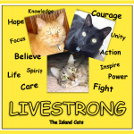 Livestrong 2012
