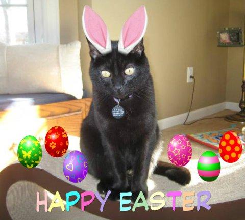 Ernie-Easter-2013